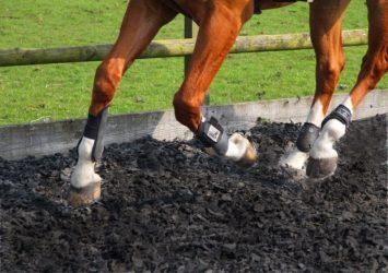 Equestrian Rubber Mulch